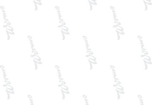 Bedrucktes Seidenpapier 5