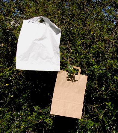 Die Plastiktüte und der Umweltkampf
